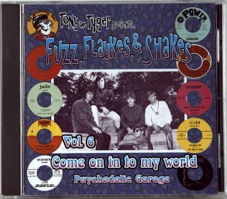 FUZZ, FLAYKES, & SHAKES VOL. 6: COME ON IN TO MY WORLD (1967-1969)